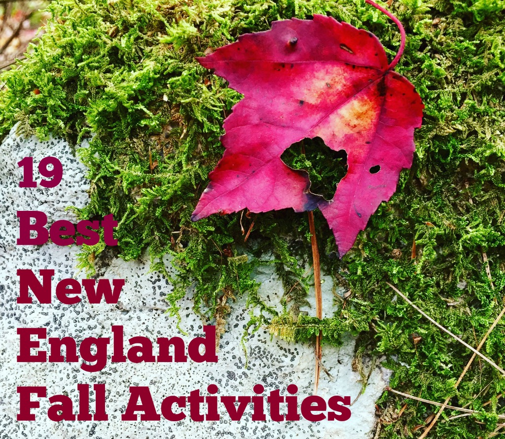 Best New England Fall Activities www.thedailyadventuresofme.com