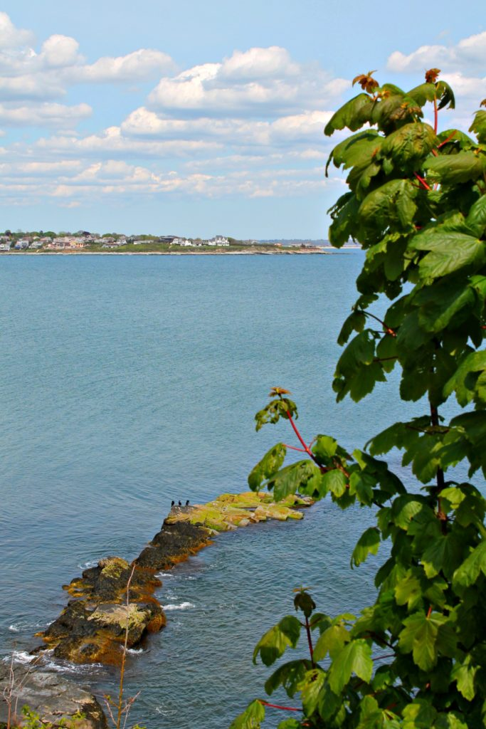 Explore one of the US' most beautiful and historical walks- Newport, Rhode Island's Cliff Walks which takes you along the cliffside  gilded-age mansions of families such as the Vanderbilts. #CliffWalk #NewportRI #RhodeIsland #thingstodoinNewportRI