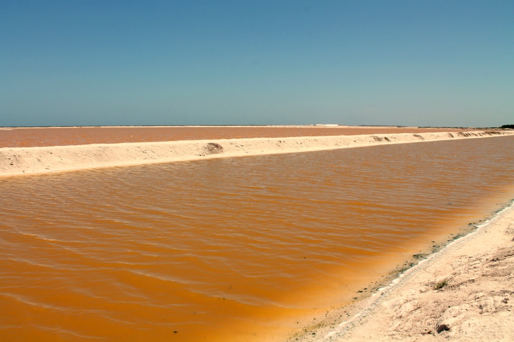 Mexico's Pink River