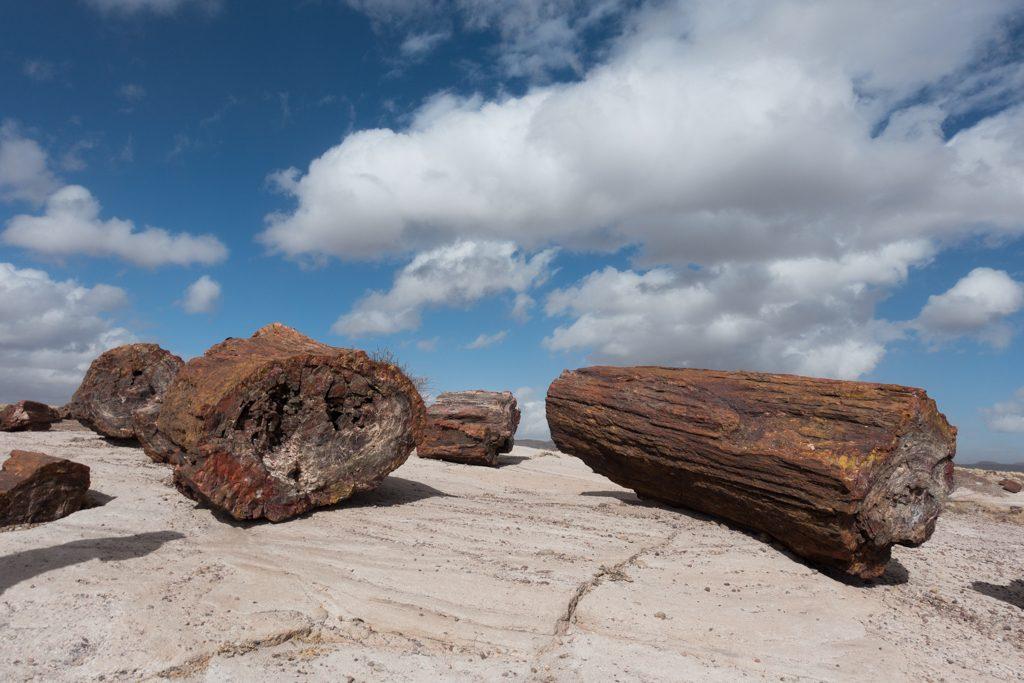 Winter in Arizona's Petrified Forest National Park