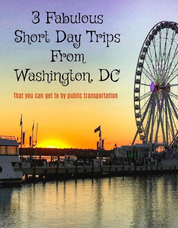 Read on to explore a few historic, educational or even frivolous day trips from Washington DC that you can get to even if you don't have a car. #DCMetro #thingstodoinDC #shorttripsfromDC