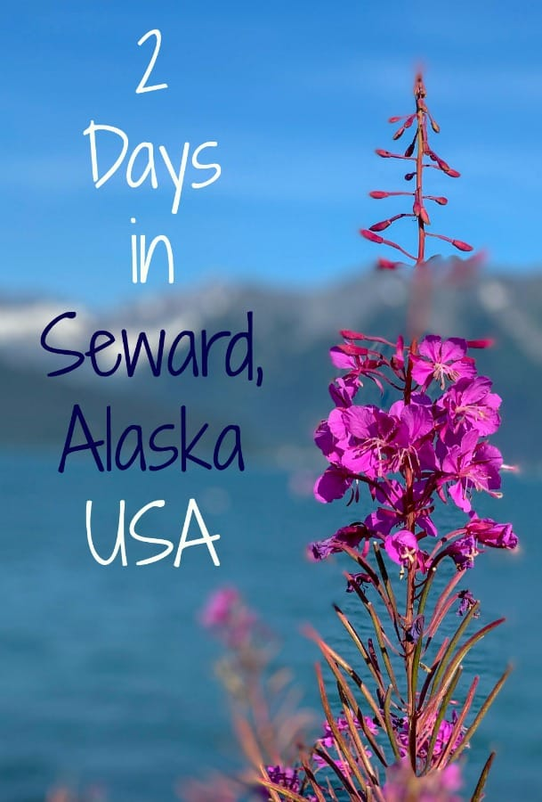 Seward, Alaska is convenient to get to a perfect gateway to explore Alaska. Read on for things to do in this Alaskan port town. #Alaska #Seward #thingstodoinSeward