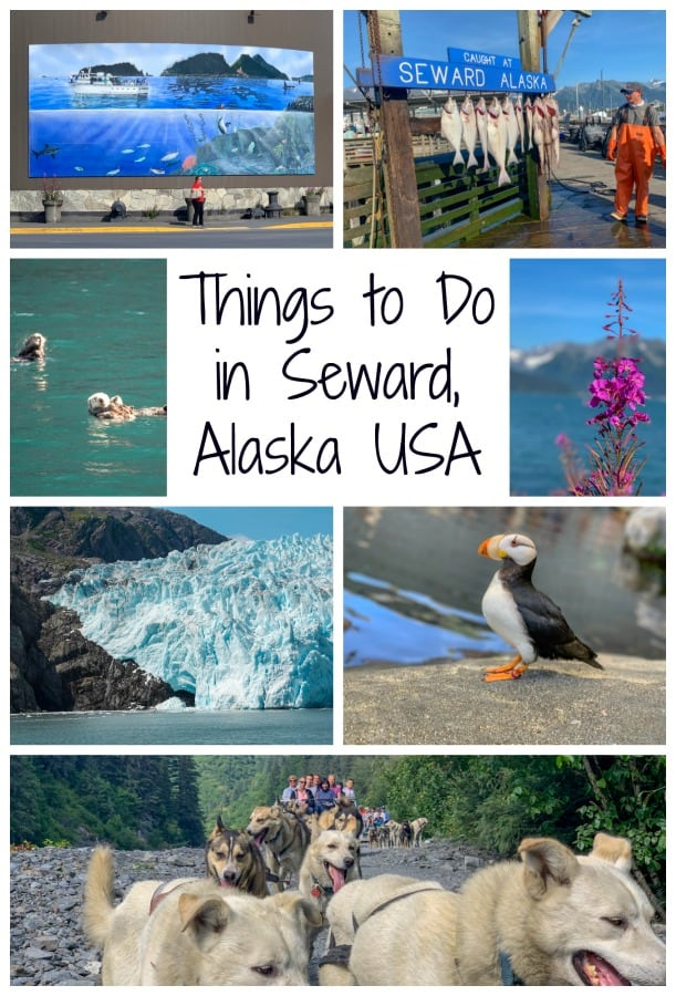 Don't just pass through Seward, Alaska, after a cruise. Read on for all the wildlife, nature and adventures you can experience in this Alaskan town. #Alaska #thingstodoinAlaska #SewardAlaska